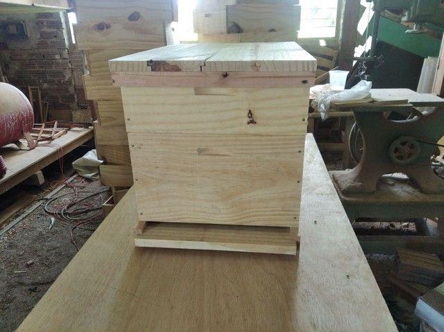 Colméia para apicultura.