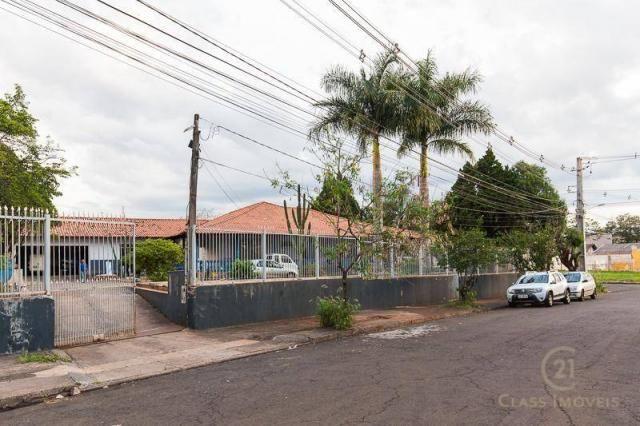 Chácara com 3 dormitórios à venda, 3005 m² - jardim morumbi - londrina/pr - Foto 19