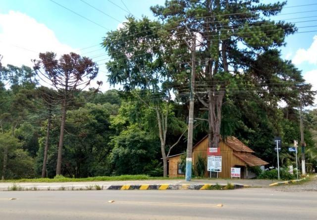 TERRENO COMERCIAL - BR 280 - RIO NEGRINHO SC - Foto 2