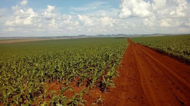 Fazenda 405 alqueires em Goioerê - PR - Foto 3