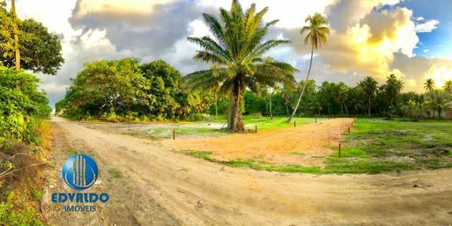 Lotes Parcelados - Sinal + 36x - Ilha Stª Rita - Lançamento - Foto 2