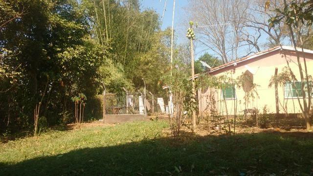 Chácara 5 ha, com Rio 70 km Campo Grande MS - Foto 4