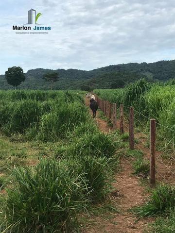 Fazenda em Uruaçu-Go - Foto 18