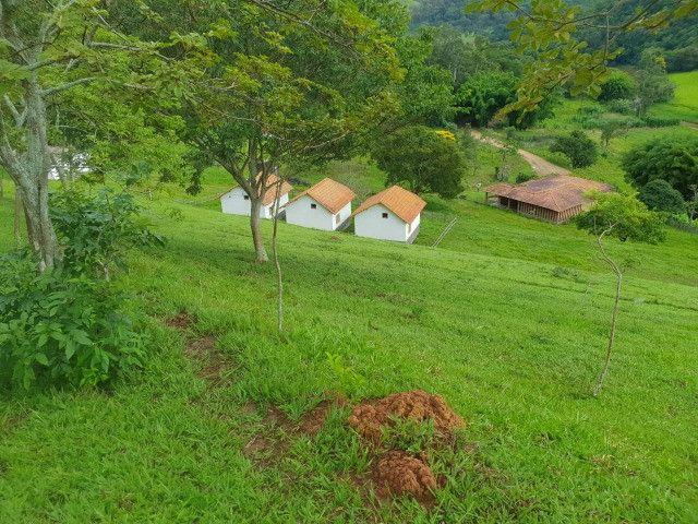 Sítio de 14.5 Alqueires em Maria da Fé - Sul de Minas - Foto 7