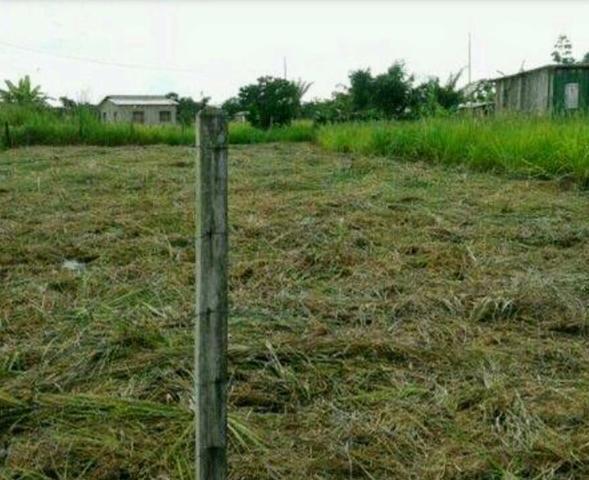 Vemde terreno no vila acre no ramal bom Jesus