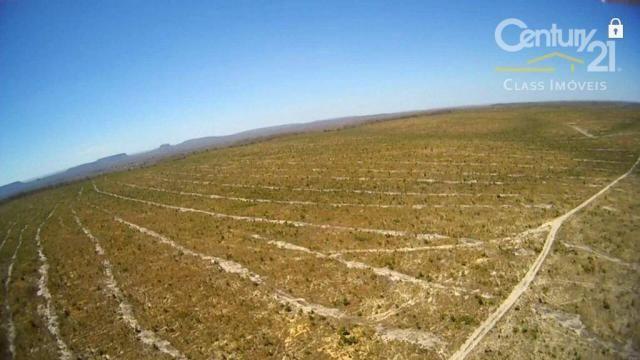 Fazenda rural à venda, zona rural, loreto. - Foto 6