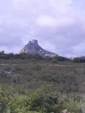 Fazenda em forquilha 130 hectares - Foto 4