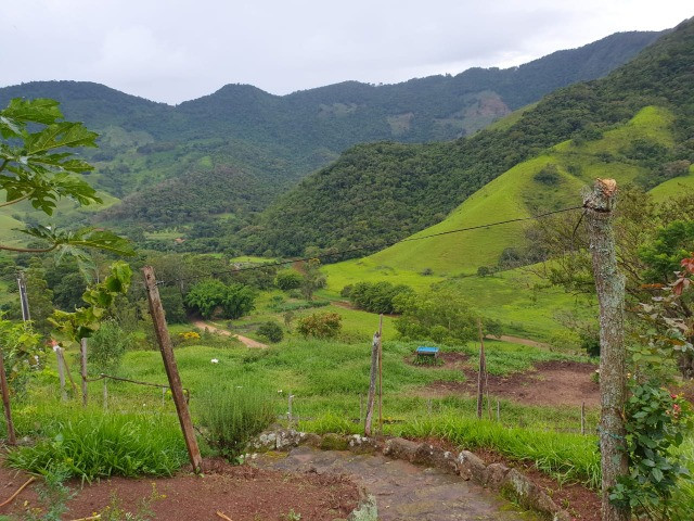 Sítio de 14.5 Alqueires em Maria da Fé - Sul de Minas - Foto 16