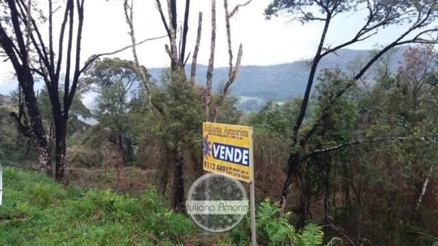 Terreno a venda! - Foto 5