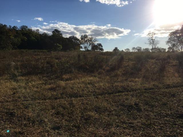 217 hectares, com 150 hectares aberto 32 km de Dom Aquino -MT - Foto 19