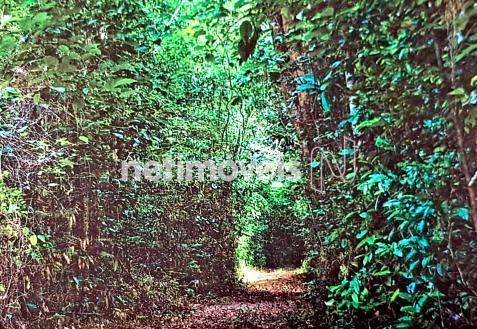 Terreno à venda em Fazenda exemplo, Cachoeira cod:766495 - Foto 14