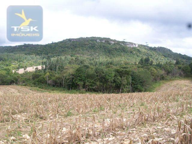 Fazenda em Quitandinha - (Cerrinho) - - Foto 2