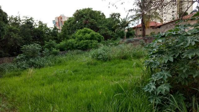 Área/Area 780m² Cidade Jardim/Vila Lucy/Sol Nascente, Lotes/Lote 780m² Cidade Jardim - Foto 2