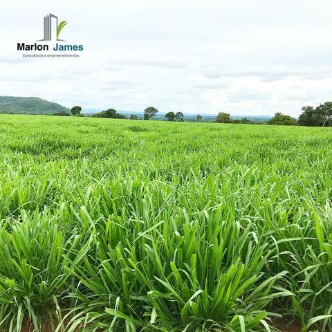 Fazenda em Uruaçu-Go - Foto 16