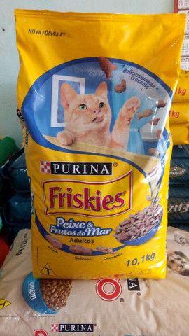 Friskies Adulto 10 kg
