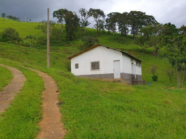 Sítio de 14.5 Alqueires em Maria da Fé - Sul de Minas - Foto 6