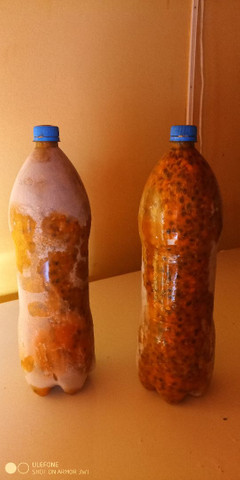 Polpa de maracujá com sementes . 20  reais o litrão de 2  litros