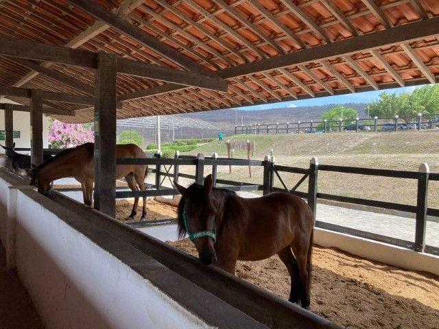 Flat hotel fazenda Monte Castelo Gravata - Foto 20