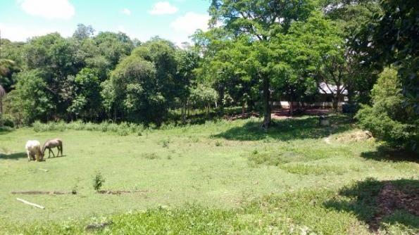 Ótimo sítio em Vale das Pedrinhas - Guapimirim RJ - Foto 5