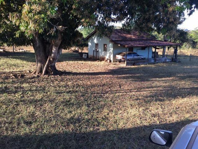 217 hectares, com 150 hectares aberto 32 km de Dom Aquino -MT - Foto 2