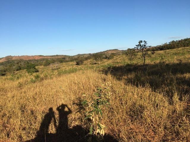 217 hectares, com 150 hectares aberto 32 km de Dom Aquino -MT - Foto 14