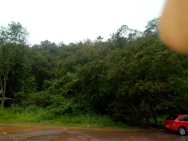 Lote Rio Acima - Foto 2