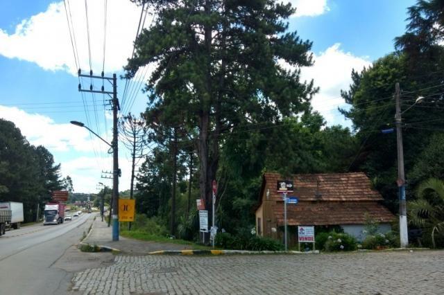 TERRENO COMERCIAL - BR 280 - RIO NEGRINHO SC - Foto 5
