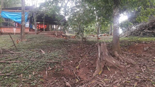 Vendo Chácara - Foto 3