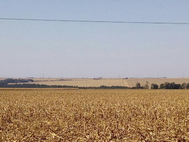 Fazenda 405 alqueires em Goioerê - PR - Foto 2