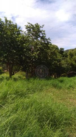 Sítio 20 ha região baú da guia mt - Foto 3