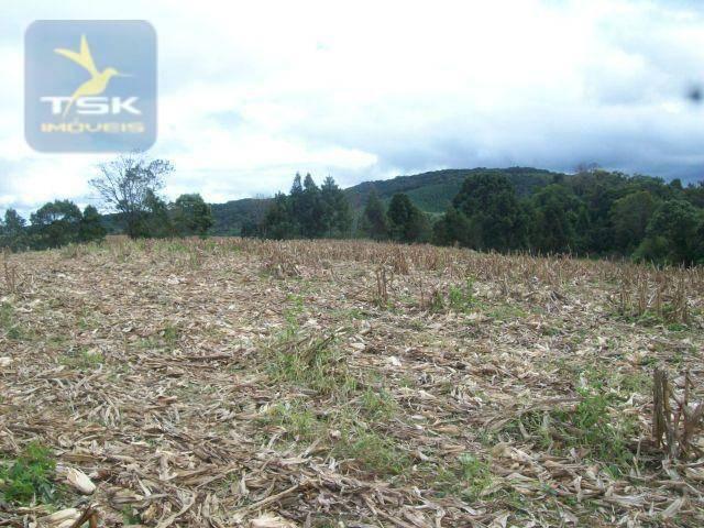 Fazenda em Quitandinha - (Cerrinho) - - Foto 15