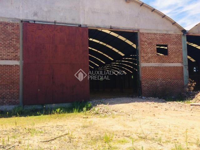 Galpão/depósito/armazém para alugar em Distrito industrial, Canela cod:308714 - Foto 2
