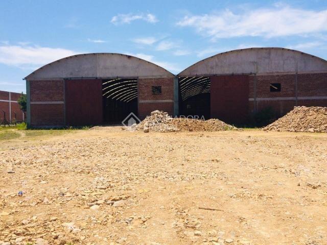 Galpão/depósito/armazém para alugar em Distrito industrial, Canela cod:308714