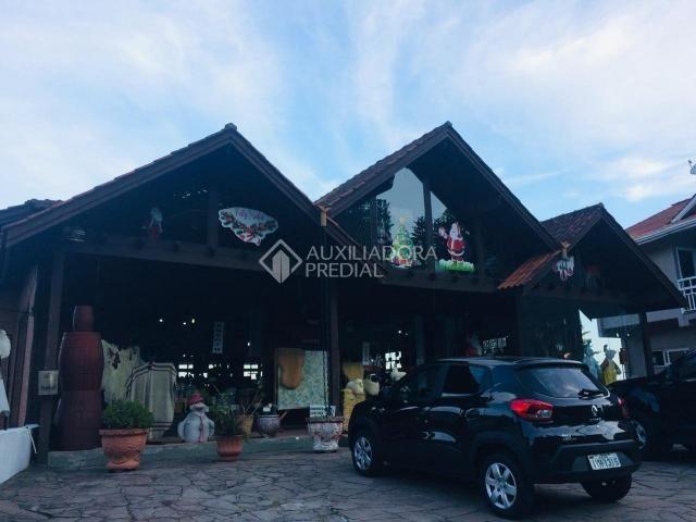 Loja comercial para alugar em Bela vista, Gramado cod:257863 - Foto 2