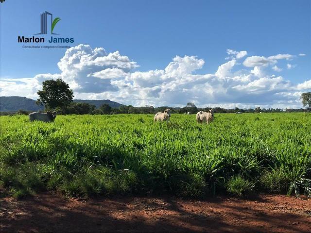 Fazenda em Uruaçu-Go - Foto 11