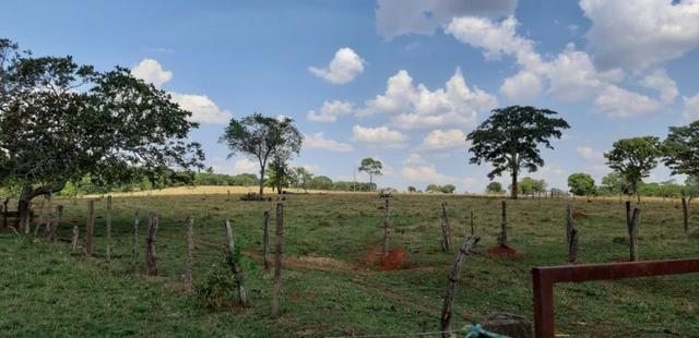 Fazenda a venda em bela vista de goias - Foto 2