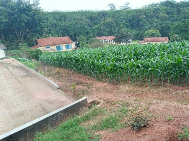 Sítio 20 Alqueires próximo a Pouso Alegre no sul de Minas Gerais  - Foto 3