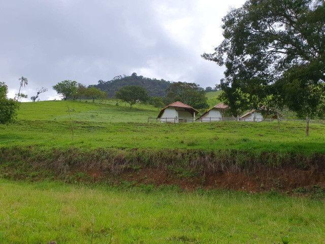 Sítio de 14.5 Alqueires em Maria da Fé - Sul de Minas - Foto 20