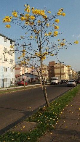 Apartamento à venda com 2 dormitórios em Rubem berta, Porto alegre cod:7959 - Foto 14