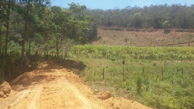 Ótimo Sítio com 24,74 hectares terra em Itaipé - Foto 2
