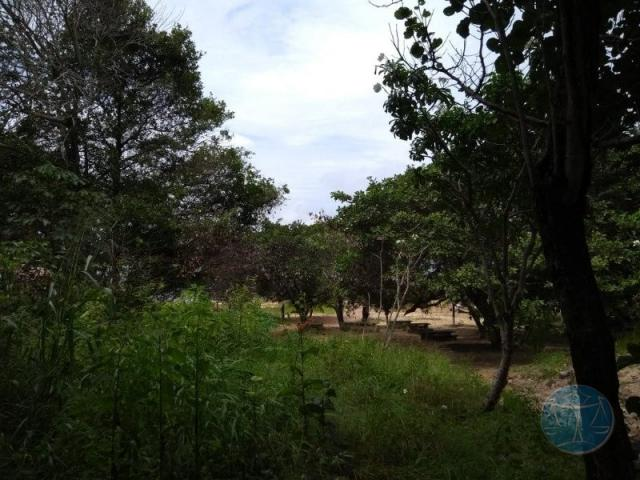 Terreno à venda em Lagoa do bonfim, Nísia floresta cod:10604 - Foto 10