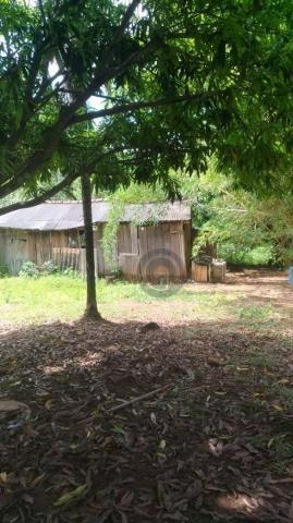 Sítio 20 ha região baú da guia mt - Foto 2