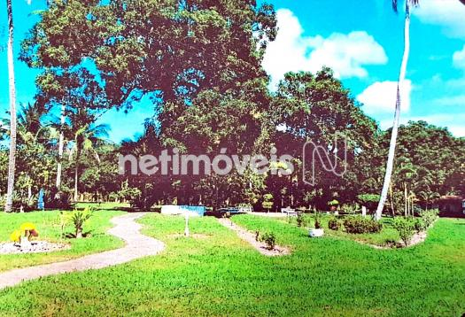Terreno à venda em Fazenda exemplo, Cachoeira cod:766495 - Foto 8