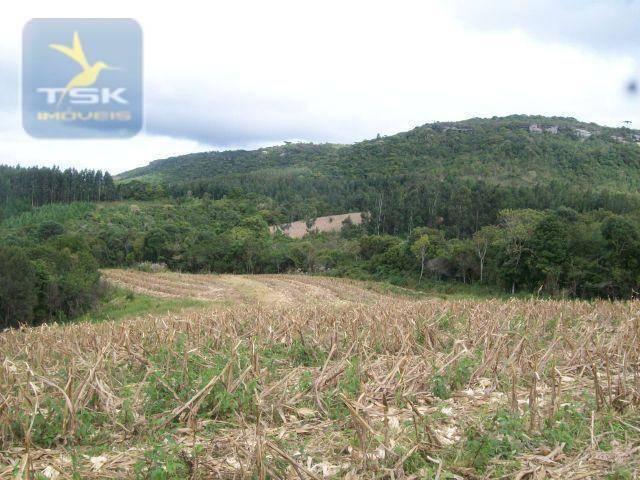 Fazenda em Quitandinha - (Cerrinho) - - Foto 11