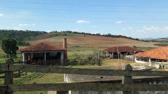 Fazenda com 189,17 Alqueires no Sul de Minas. - Foto 16