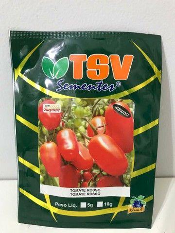 Sementes de Tomate Rosso - Híbrido