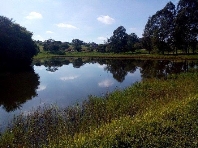Terreno Com 450 m² Na Avenida Do Ninho Verde 1