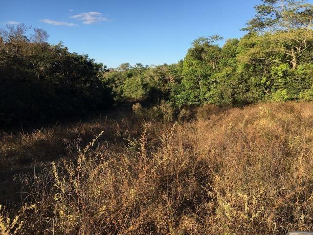 217 hectares, com 150 hectares aberto 32 km de Dom Aquino -MT - Foto 12