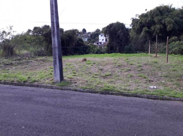 Terreno plano de barbada bairro guarani - Foto 6