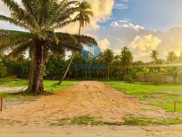 Lotes Parcelados - Sinal + 36x - Ilha Stª Rita - Lançamento - Foto 3
